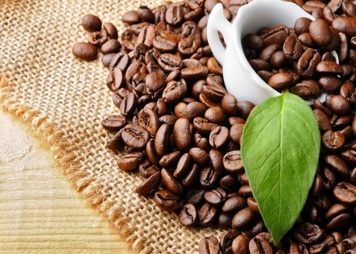 Vì sao cà phê nguyên chất Daklak nổi tiếng?